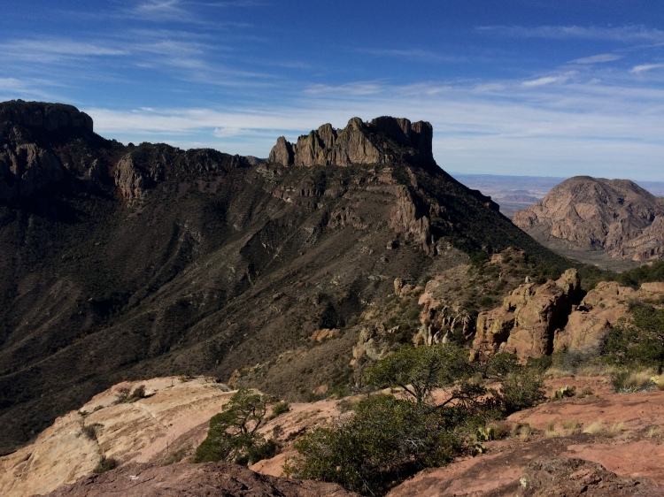 View from Big Bend National Park